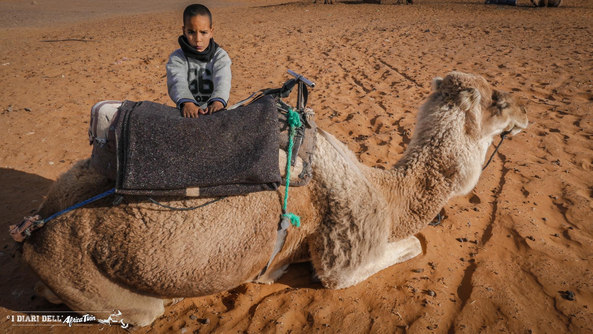 marocco in solitaria tour cammello merzouga