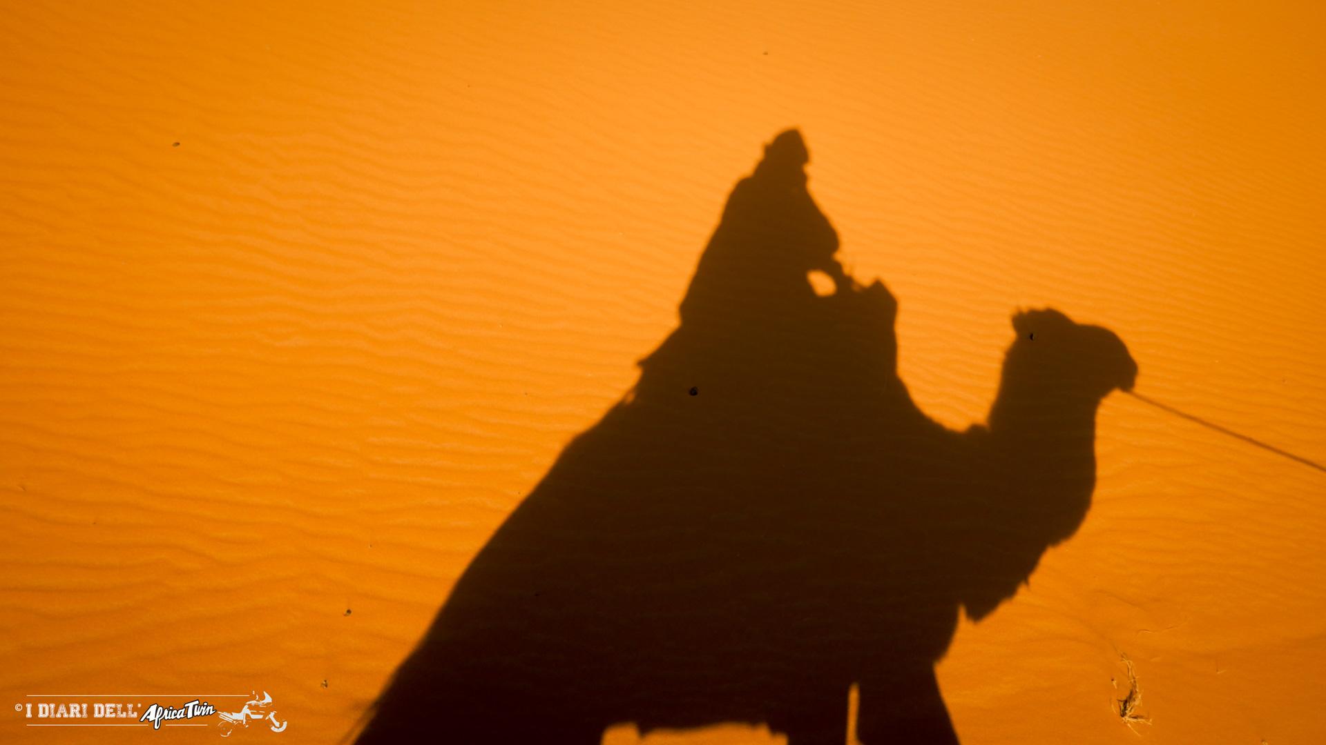 marocco in solitaria traversata in cammello merzouga