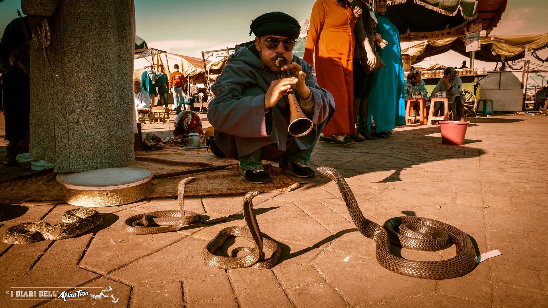 Jamaa El Fna - incantatore di serpenti