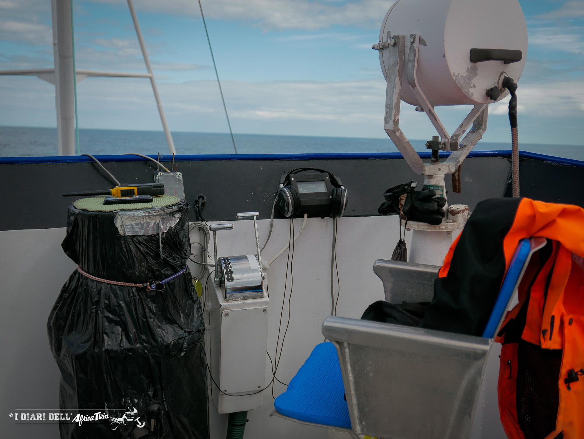 sperm whale capodogli isole lofoten norvegia