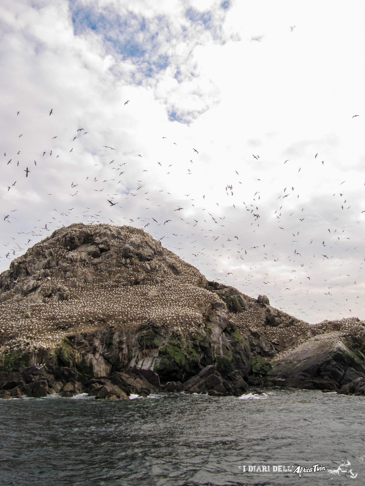 riserva naturale Sept-Îles