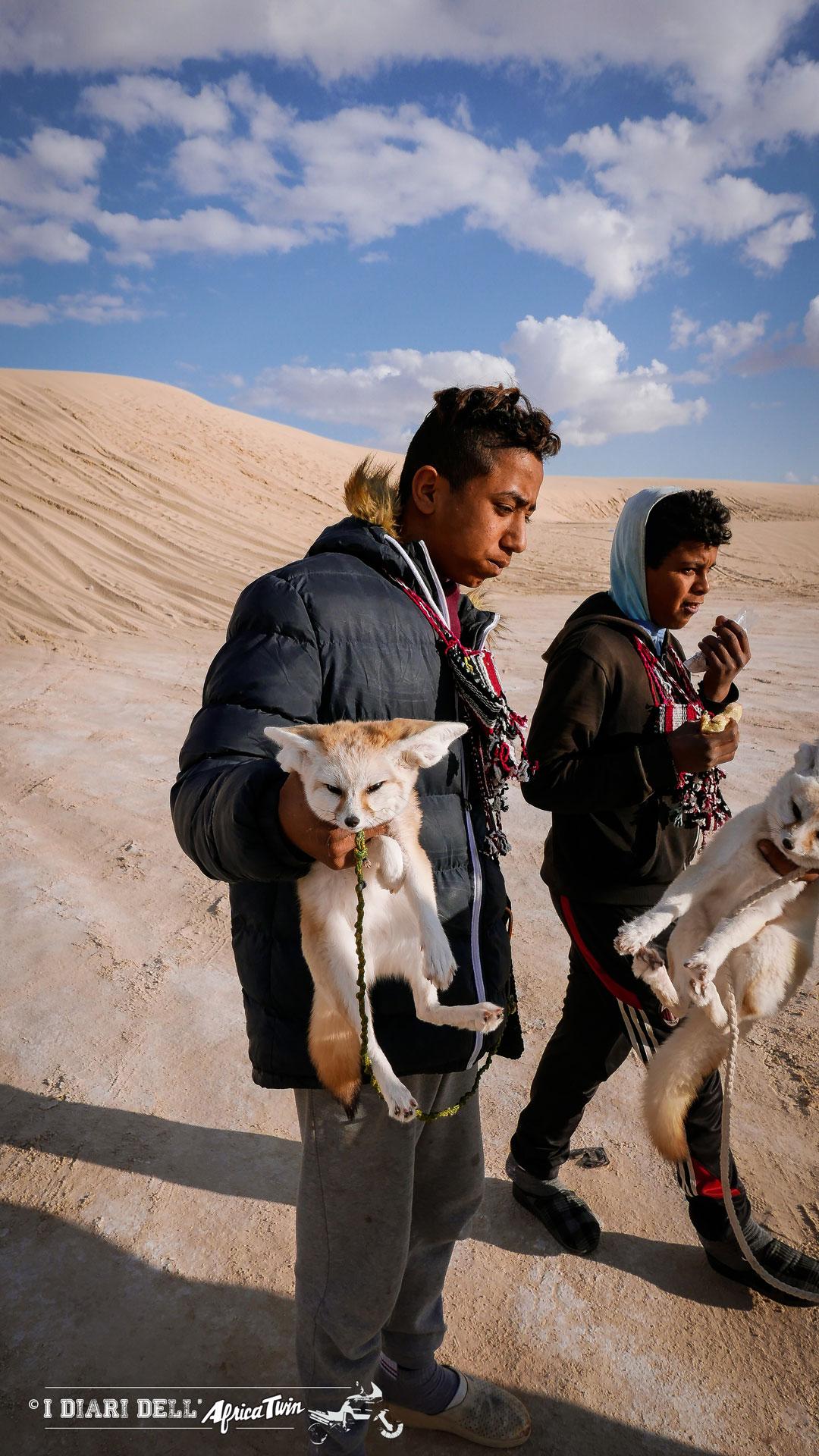 bambino con volpe del deserto